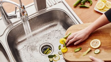 Photo of Keeping Your Kitchen Food Disposal System Clean and Odorless